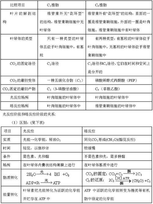 高三生物知识点纠错笔记(4)
