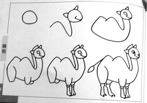 简笔画 骆驼1