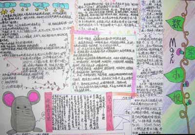 二年级手抄报:数学小知识