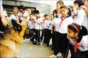 近日,越秀警方加强学校周边治安巡逻力度,出动警犬参加巡逻