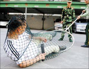 """5月4日,福建泉州边防支队官兵练习自己研制的""""网罩棍"""""""