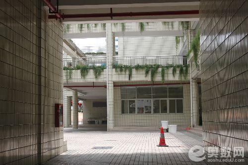深圳外国语学校校内小道