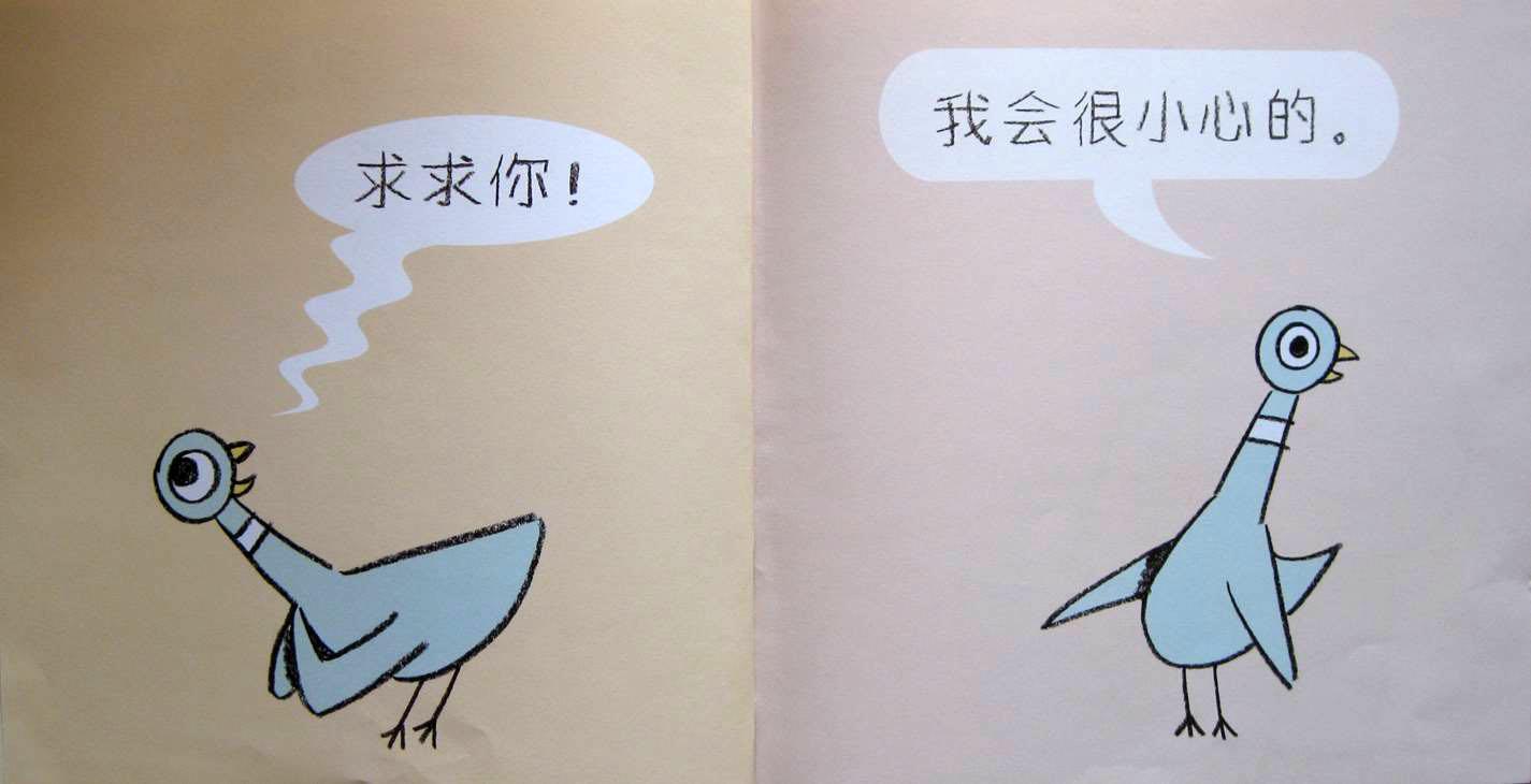 美丽可爱极了. 鸽子像征着和平.世界