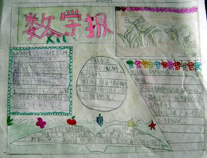 五年级数学手抄报:花花草草的世界