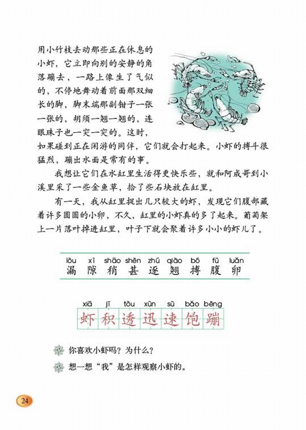 北师大版三年级下册语文:三 可爱的小生灵