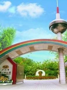 广州市第一幼儿园简介