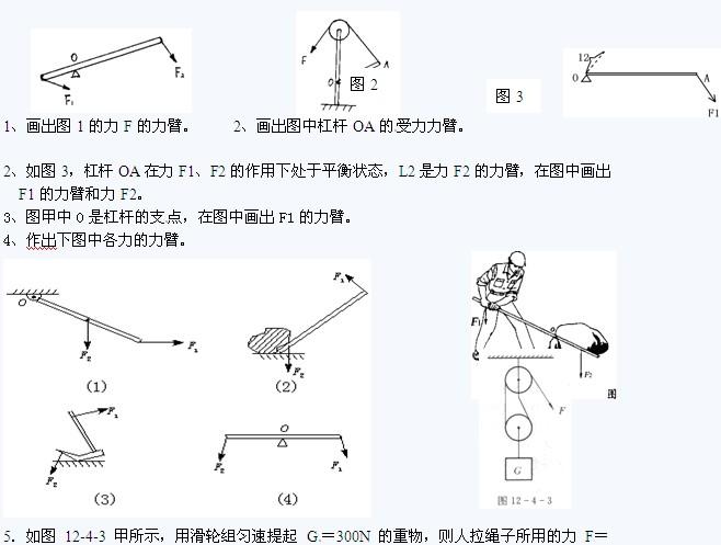 2011年中考物理专项练习:杠杆与滑轮