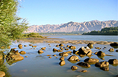 保护水资源作文