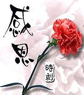 关于 母亲节/母亲节作文_关于感恩母亲节的英语作文_有关...