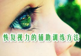 恢复视力的辅助训练方法