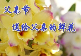 父亲节送给父亲的鲜花
