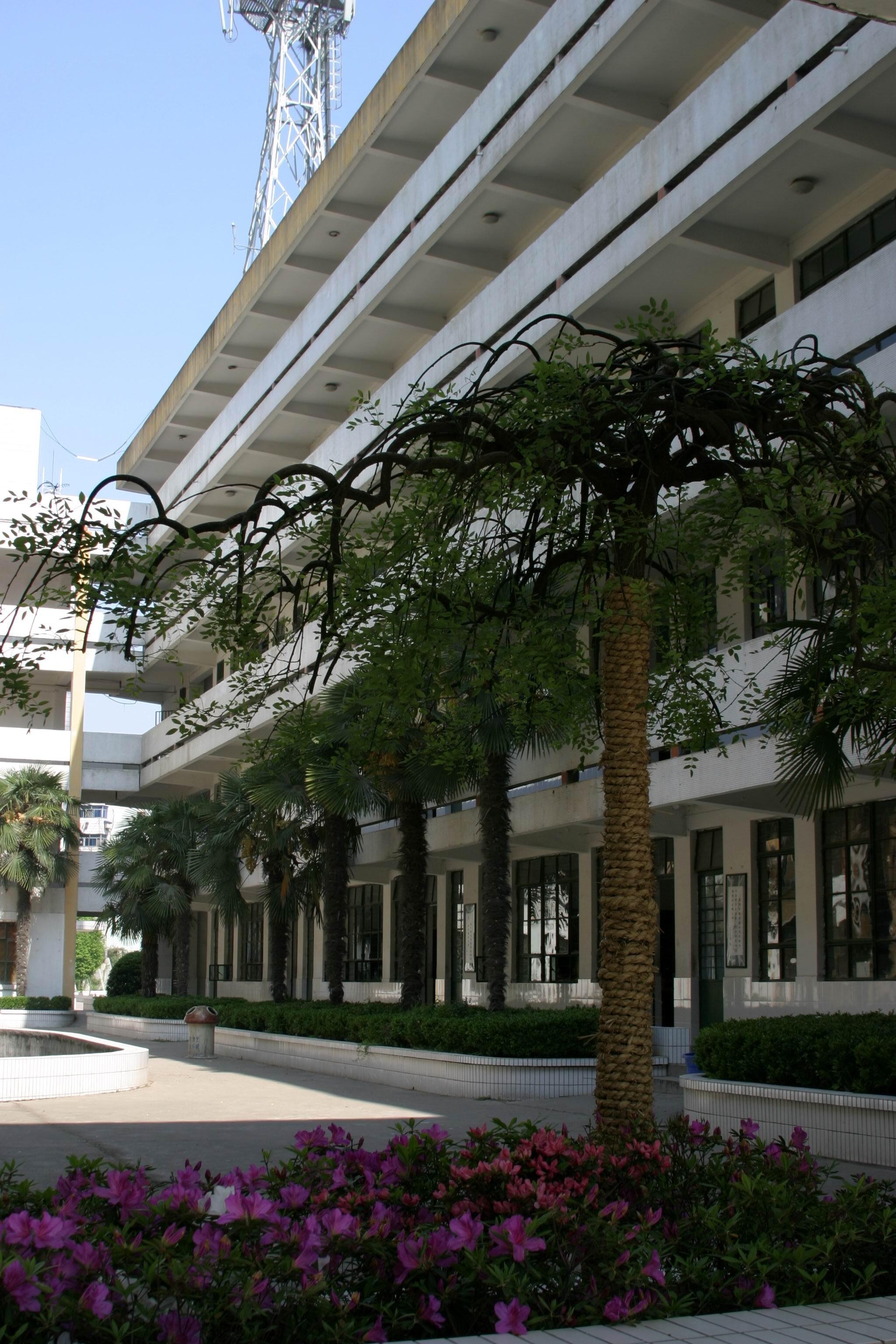 南京市南湖第二中学风景图