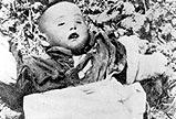 被毒死的中国儿童