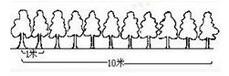 奥数植树问题