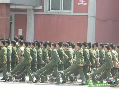 沈阳雨田实验 绿色大军 成校园新亮点 4图片
