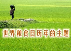 世界粮食日历年的主题