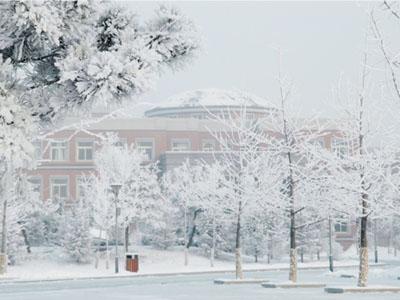 雪中的东北育才学校美不胜收