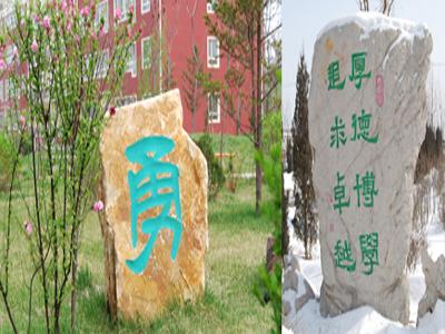 2010年沈阳市第五十六中学中考录取分数线公费689 择校642