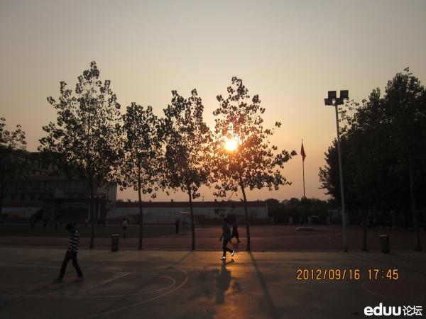 郑州枫杨外国语中学 组图图片