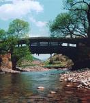 关于桥的作文:立交桥公园