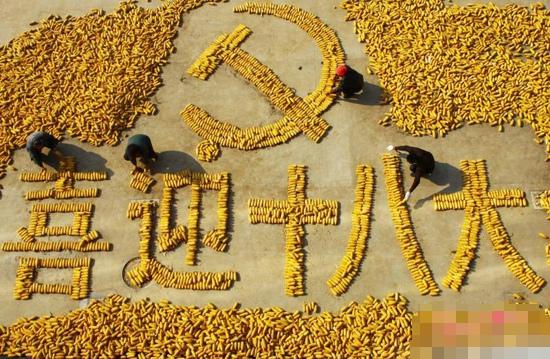 喜迎十八大图片:用玉米喜迎十八大