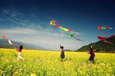清明节习俗:放风筝