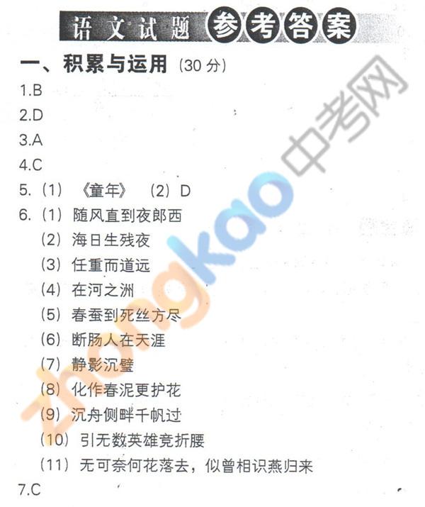 2013年沈阳中考语文试题参考答案