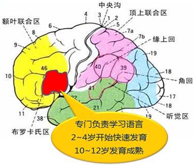 2013广州市幼儿招生