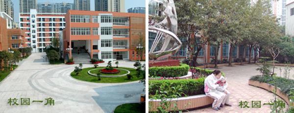 重庆松树桥中学校园风貌(4)