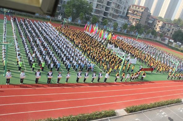 开幕式上,随着李进兵书记宣布运动会开幕,各方阵陆续入场.图片