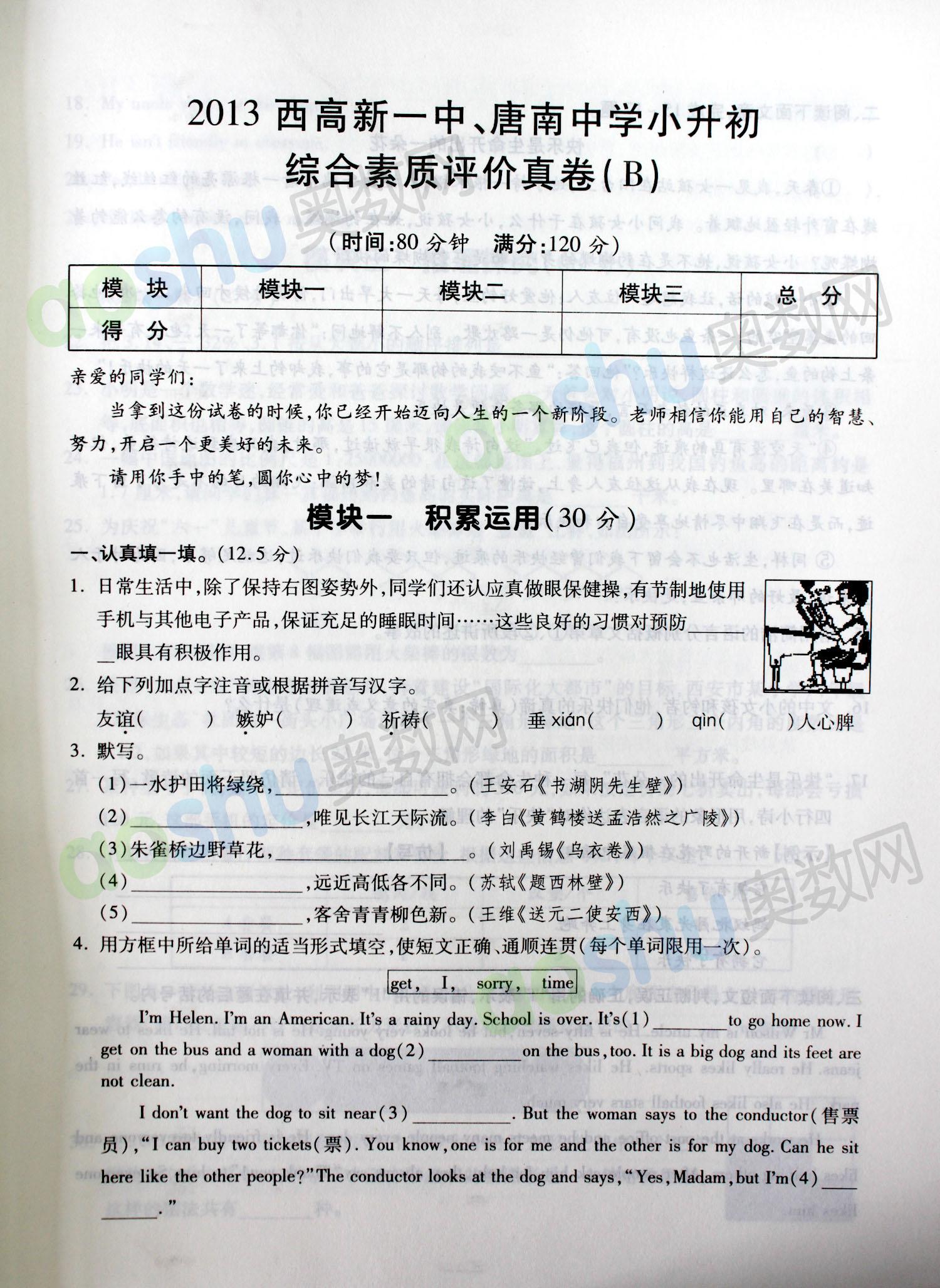 2013高新一中 唐南中学小升初526综合素质评价真卷B