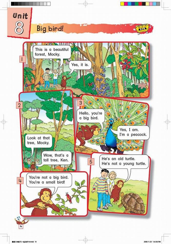 北师大版小学英语三年级英语课本下册:unit8 big bird!