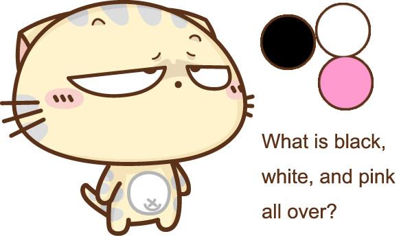 趣味英语谜语 What is black, white, and pink all over