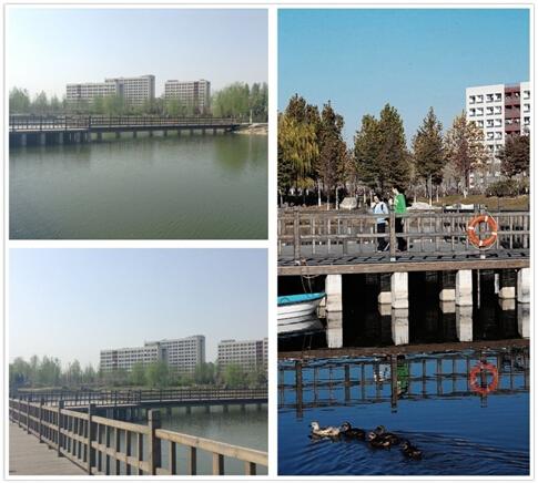 北京理工大学学习生活