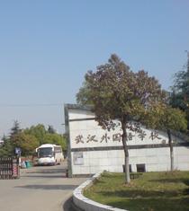 武汉实验外国语学校