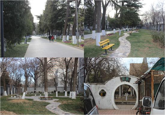 校园小路和小花园-北京外国语大学学校概况图片