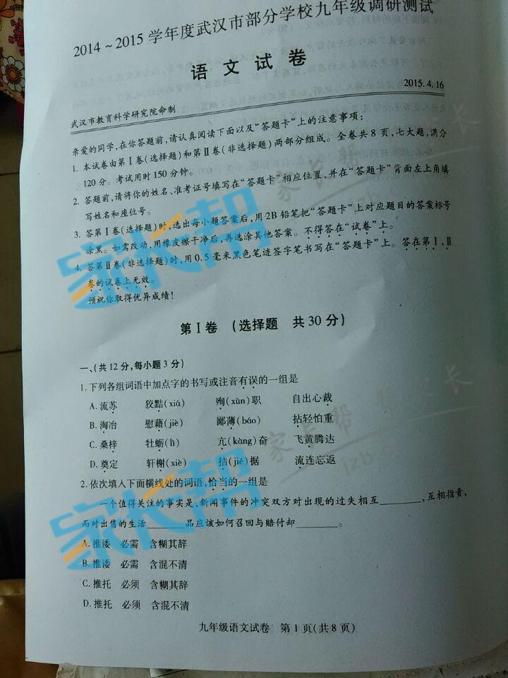2015年武汉四月调考语文试题