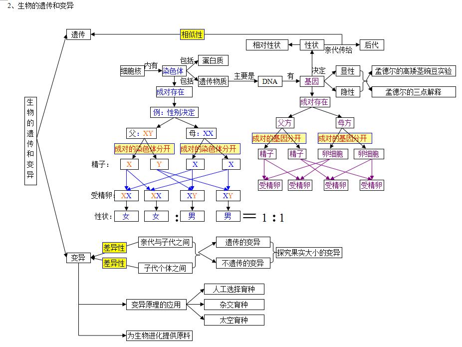 初中生物思维导图:生物的生殖发育和遗传专题(2)