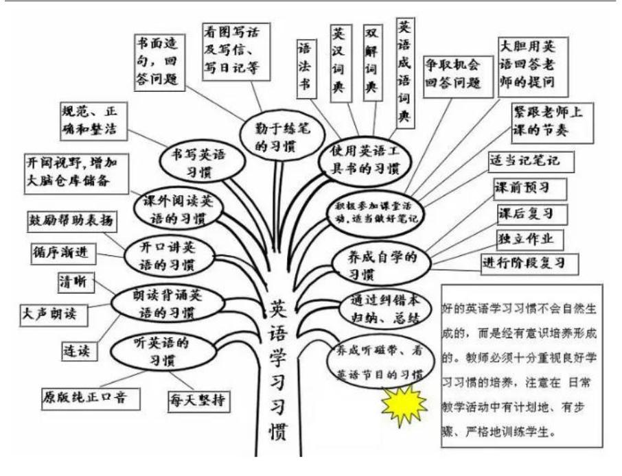 青岛小学英语语法树:英语学习习惯