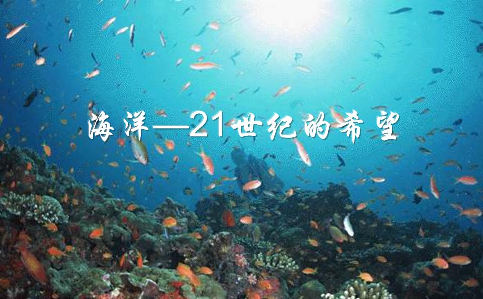 壁纸 海底 海底世界 海洋馆 水族馆 桌面 961_596