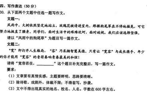 2017年黑龙江绥化中考作文题目:风雨中的狗尾草/宽容若在
