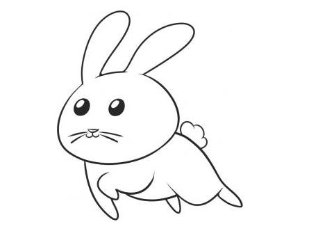 幼儿简笔画步骤图 小兔子 3
