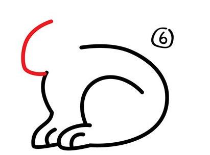 幼儿简笔画步骤图 兔子详细画法 6