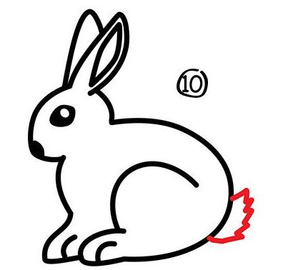 幼儿简笔画步骤图 兔子详细画法 10