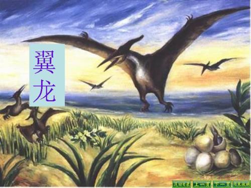 《飞向蓝天的恐龙》ppt