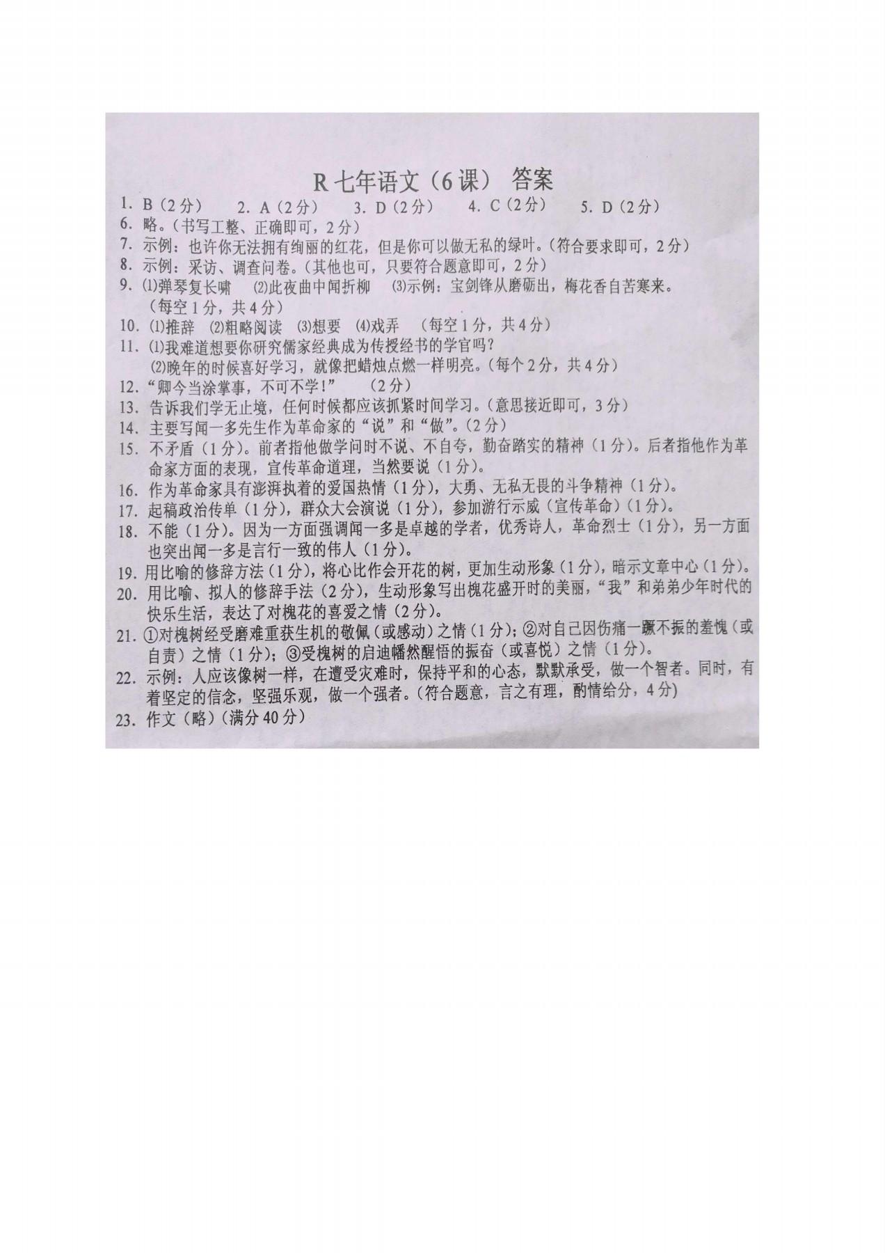 2017辽宁台安七年级下阶段检查语文试题答案(Word版)