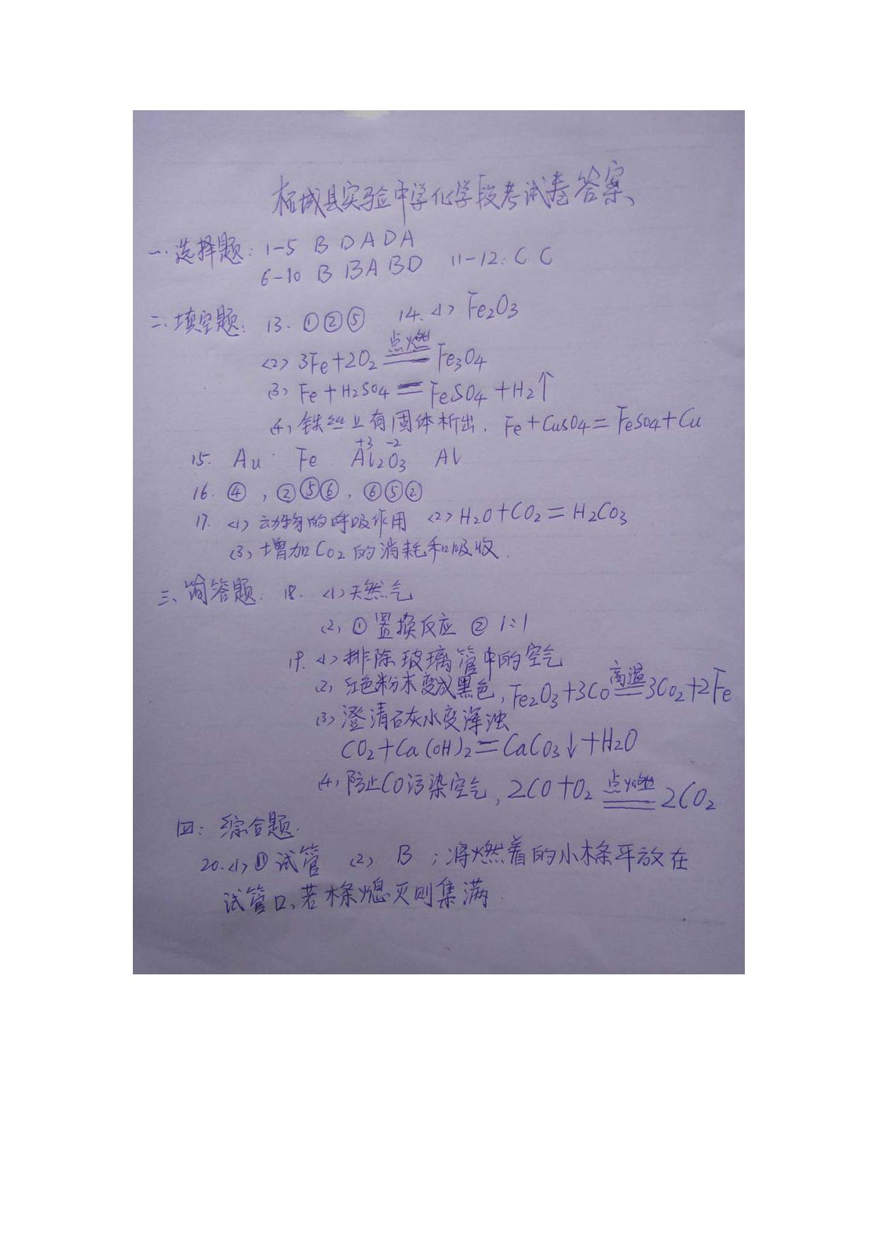 河南商丘柘城实验中学2016―2017第一学期九年级12月质量调研化学试卷答案(图片版)