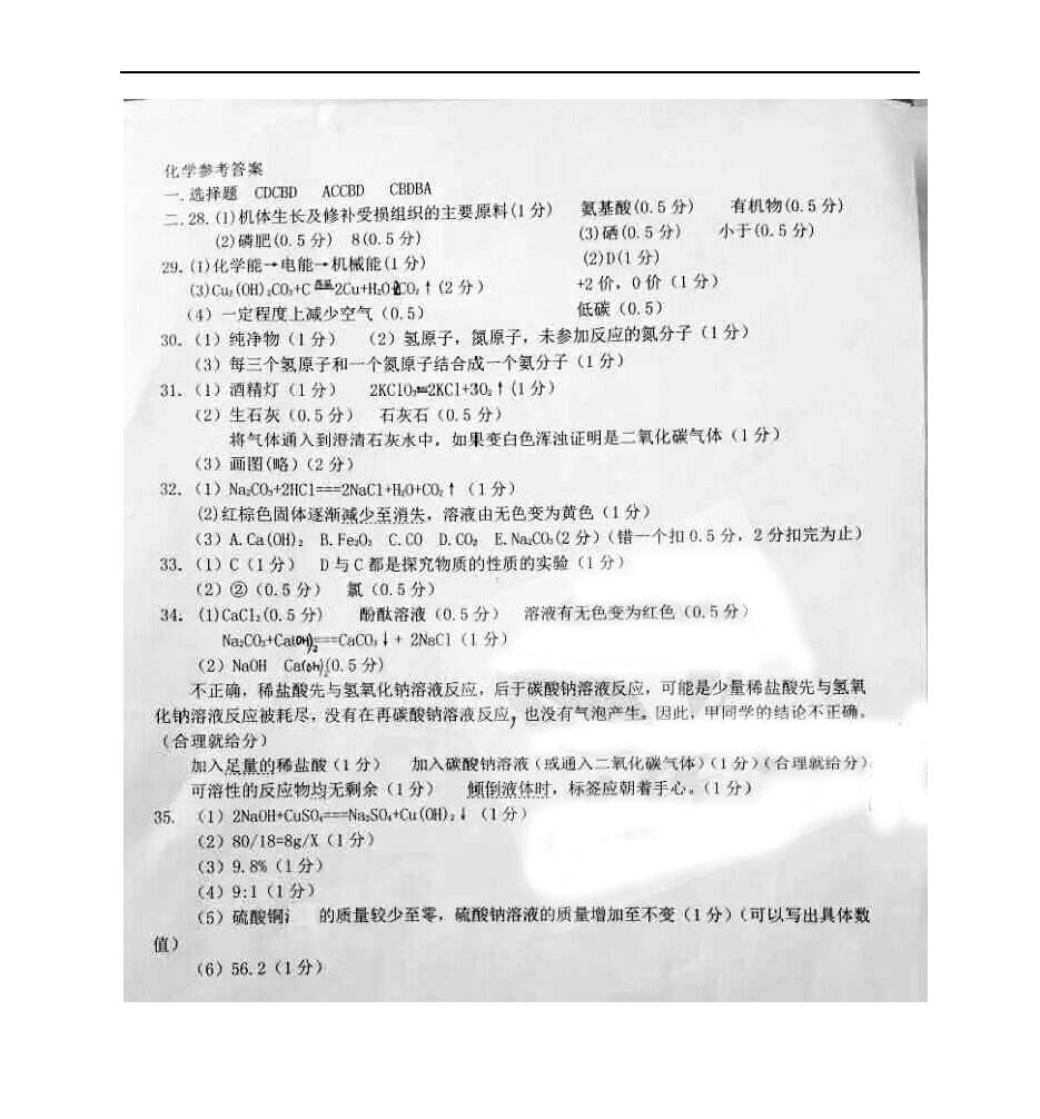 黑龙江哈尔滨第一一三中学2017九年级2月阶段性考试化学试题答案(图片版)