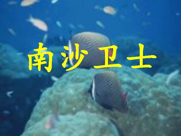 壁纸 海底 海底世界 海洋馆 水族馆 605_454