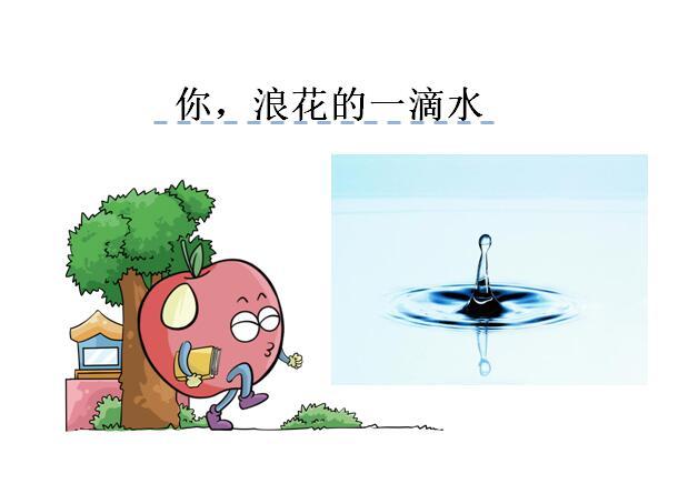 北师大版六年级下册语文课件《你,浪花的一滴水》